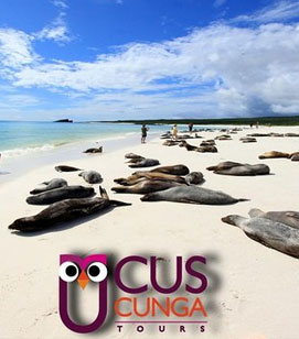 travel to galapagos cuscunga tours travel