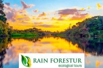 rainforestur-amazon-jungle-ecuador