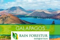 rainforestur-galapagos-travel-agency